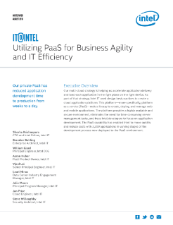 PaaS for Business Agility and IT Efficiency